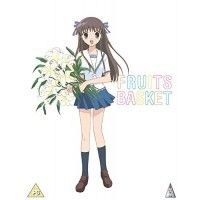 Fruits Basket Collector's Edition (with art box and art cards)
